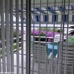 Apartmani GREGO - pogled na terasu