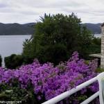Apartmani GREGO - pogled s terase
